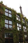 Green Wall of the Quai Branly